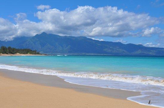 Haiku Cannery Inn B&B: The beautiful Baldwin Beach