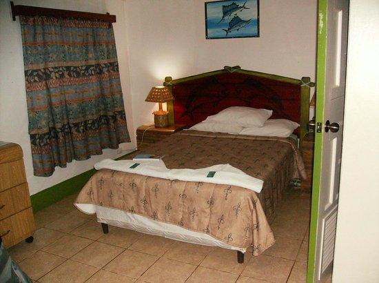 Hotel Los Delfines : Room
