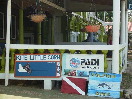 Hotel Los Delfines: Dive shop