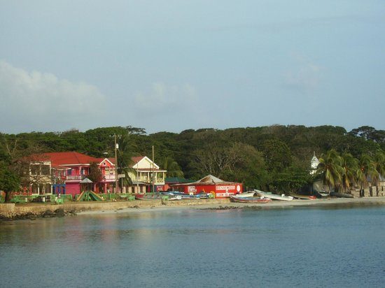 Hotel Los Delfines : View from Panga