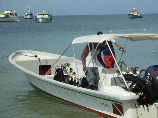 Hotel Los Delfines: Dive boat