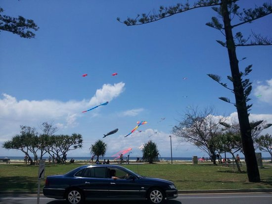 GG's Cafe : Kites are flying today