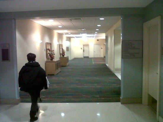 Edward Hotel Chicago: large and neat coredor