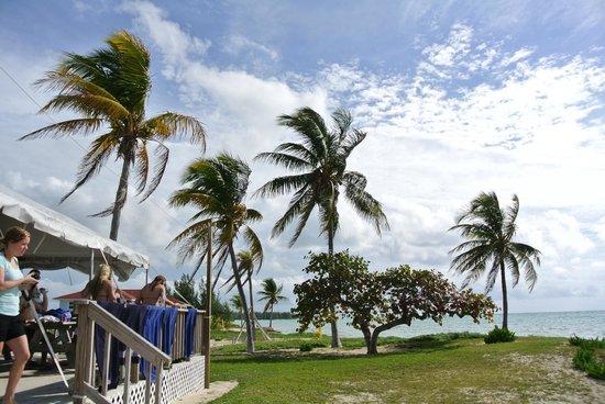 Paradise Cove Beach Resort: great view!