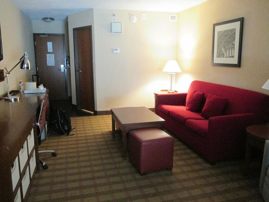 Four Points by Sheraton San Antonio Airport: Livingroom