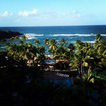 Hyatt Hacienda Del Mar: View from 5807 on the 8th floor