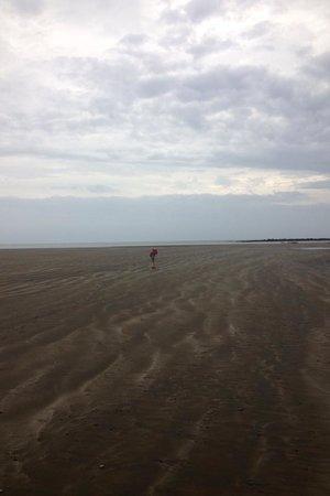 Luna Negra : Miles of beautiful beach