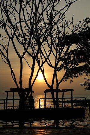 Novotel Phuket Kamala Beach: Вот это лучшее впечатление от вида отеля