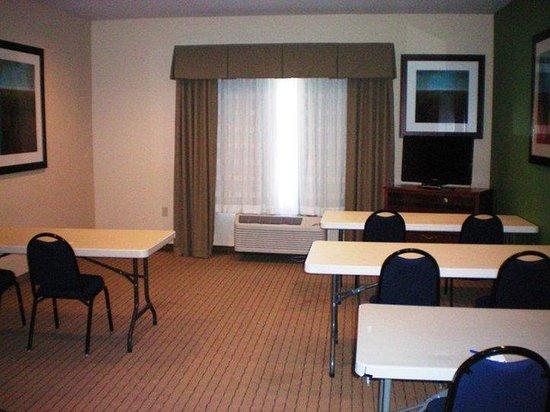 Holiday Inn Express Acme-Traverse City: Boardroom