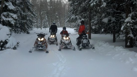 Elk Mountain Adventure Tours: powder day