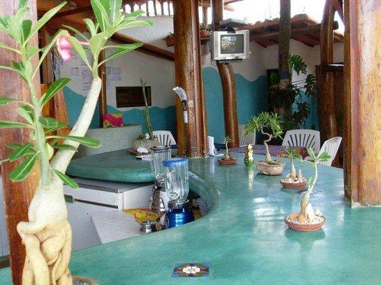 Posada Los Mangos: Area de Restaurant y Bar