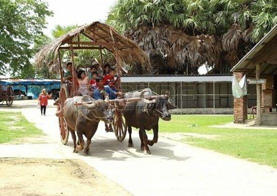 Si Prachan, Thailand: Water Buffalo Preservation village