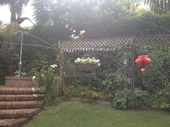 Eden Park Bed & Breakfast : Backyard/Garden