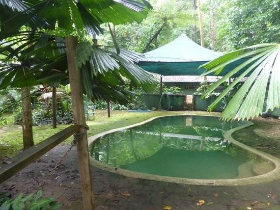 Daintree Crocodylus: Pool im Crocodylus