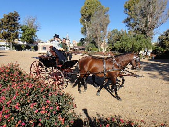 Fundación Real Escuela Andaluza del Arte Ecuestre : Prancing with the Carriages