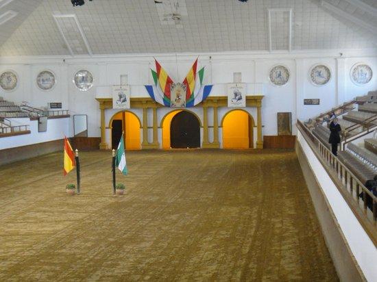 Fundación Real Escuela Andaluza del Arte Ecuestre : The pavillon for Showtime