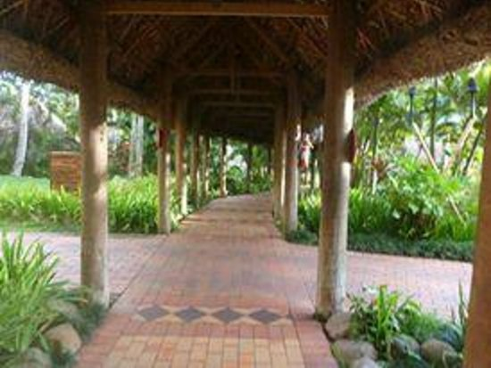 Outrigger Fiji Beach Resort : the hotel grounds leading u to the pool