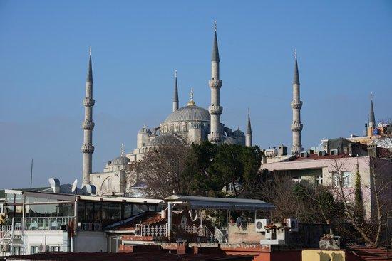 Saba Sultan Otel: La mosquée bleue depuis la terrasse