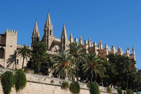 Catedral de Mallorca: Кафедральный собор