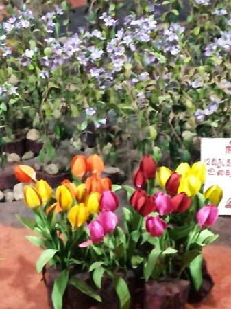 Thread Garden: Colourful Tulips. Shading of the flowers is very realistic and using just threads, without needl
