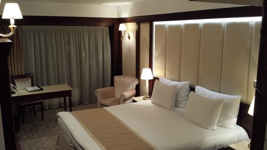 Hotel International Sinaia: A room
