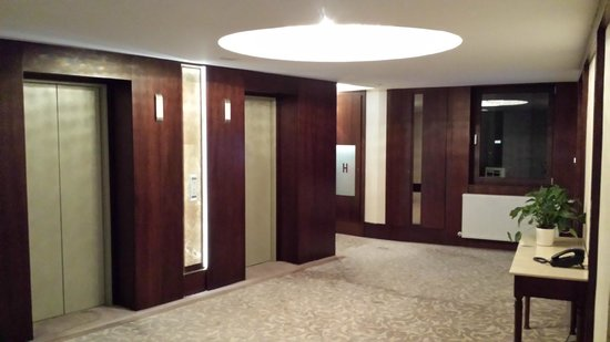 Hotel International Sinaia: To lift
