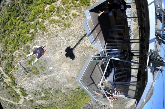AJ Hackett Bungy New Zealand: This is the best thing ever!!