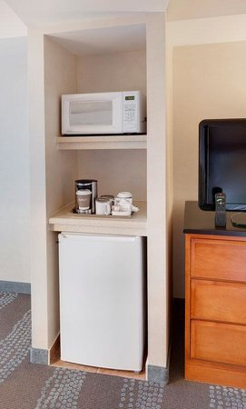 Radisson Hotel & Suites Fallsview: In-Room Microwave & Fridge