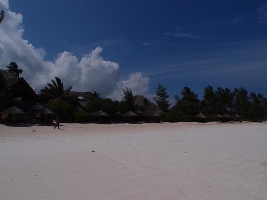 Zanzibar Retreat Hotel : the beach in Matemwe