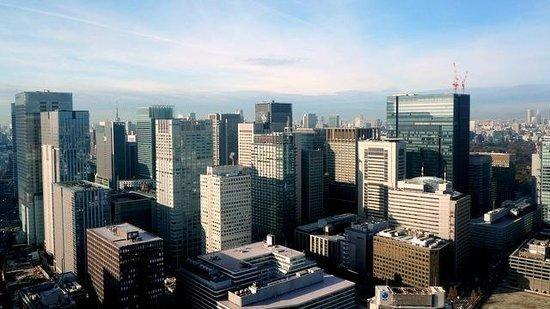 Mandarin Oriental, Tokyo : 西側の眺望