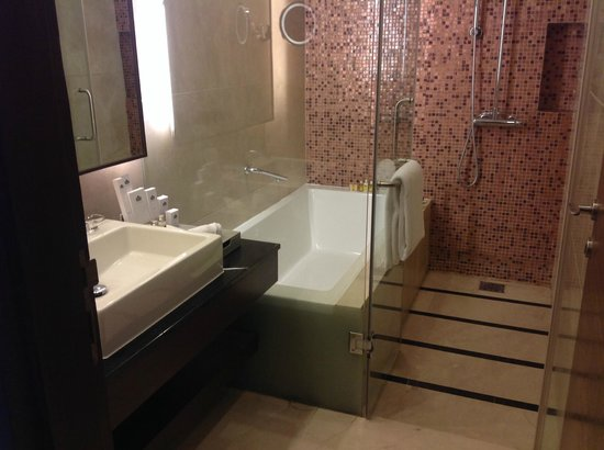 Country Inn & Suites by Carlson - Gurgaon, Udyog Vihar : Spacious Bathroom
