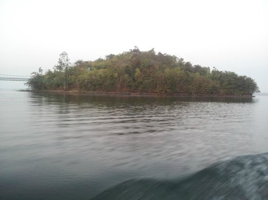 River Tern Lodge: Cottages are on this island