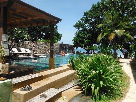 Easy Divers - Koh Tao: Sairee beach pool
