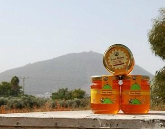 Mount Tabor: Honey I bought from Dvorat Hatavor with mount Tavor in the background