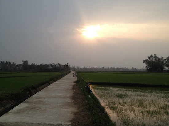 Hoian Cycling: Some of the views