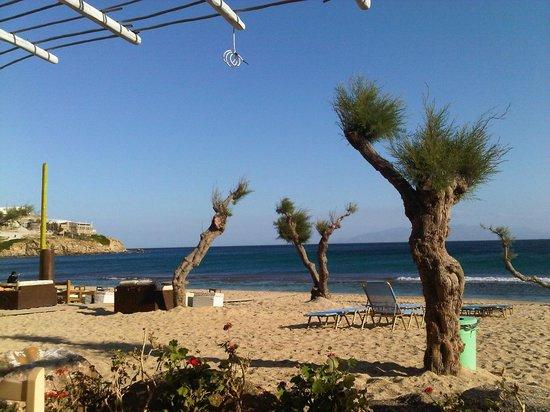 Paradise Beach Resort and Camping: Paradise Beach (May)