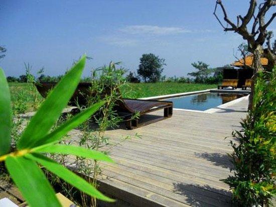 D'Sawah Villas: Pool