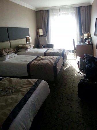 Darkhill Hotel: Our room