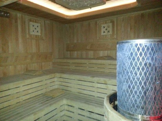 Darkhill Hotel: sauna