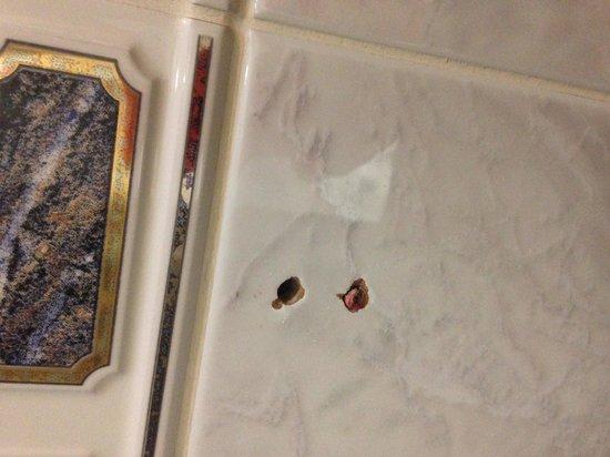 Grange Strathmore Hotel: Holes were toilet roll holder should be