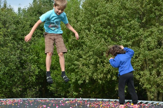 Gumtree Farmstay: Bryce and Lucie jumping on trampoline