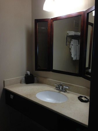 Sheraton Fort Worth Downtown Hotel: 1980's mirror in bathroom