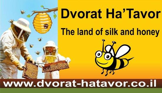 Dvorat HaTavor
