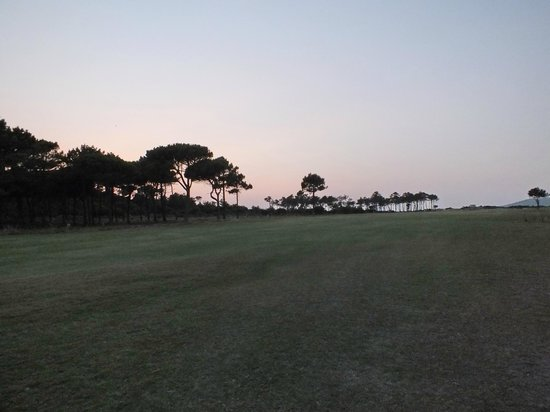 The Oitavos : Golf fields