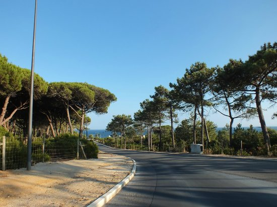 The Oitavos: Cascais road