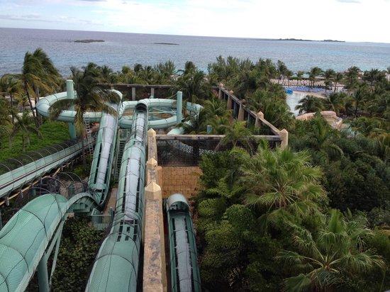 Atlantis, Royal Towers, Autograph Collection: Slides