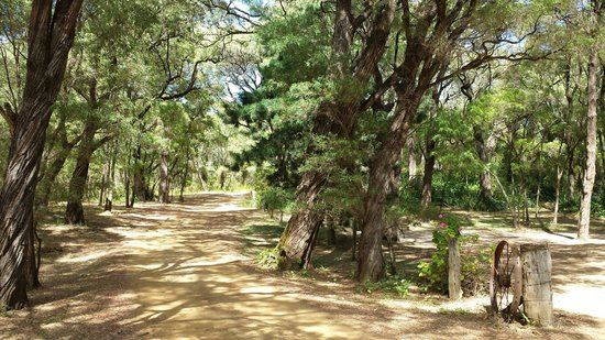 William Bay Country Cottages: Beautiful setting, Splendid Wren just to the right of this pic
