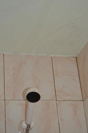 Dunas Mirador Maspalomas: bathroom. need renovation