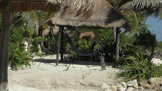 Balamku Inn on the Beach: Hammocks