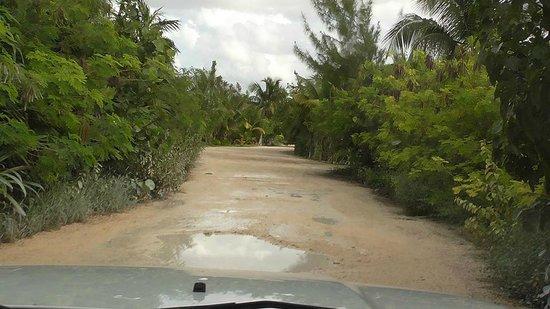 Balamku Inn on the Beach: Bumpy beach road access